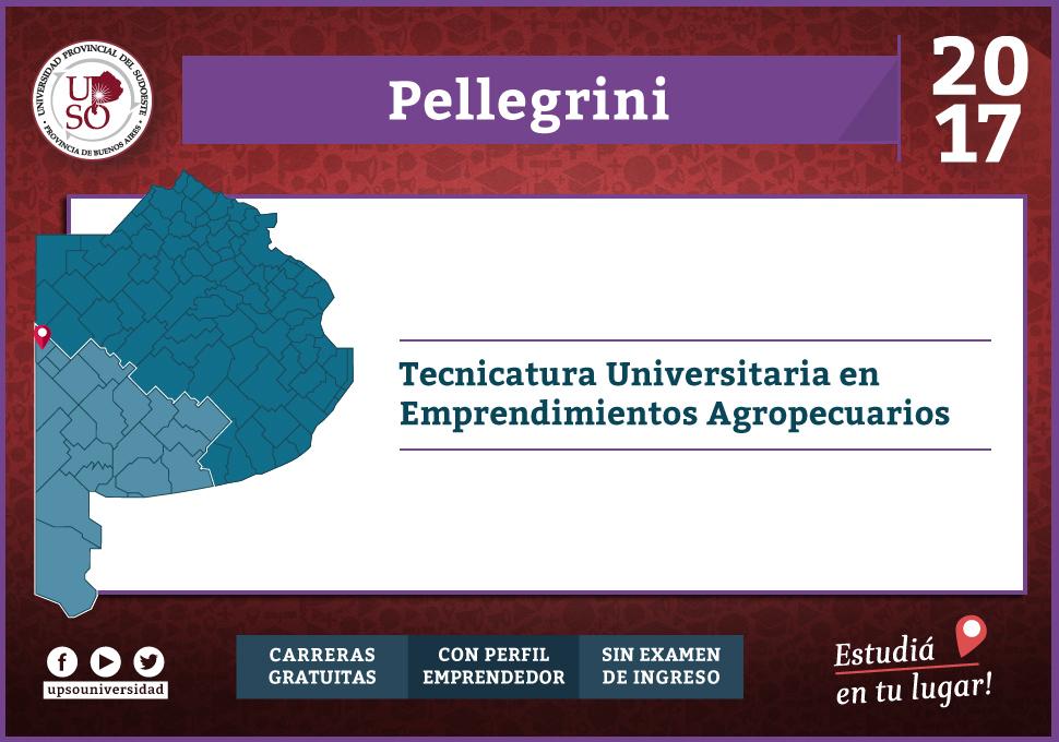 Oferta2017xsede-Pellegrini