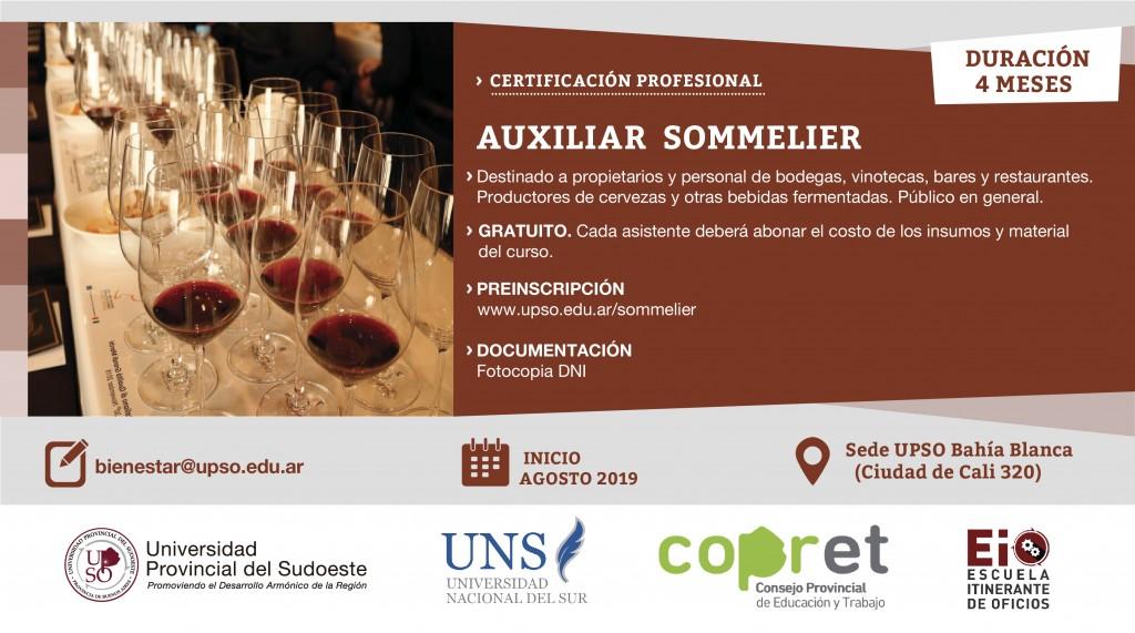 AUXILIAR SOMELIER 8-08-01